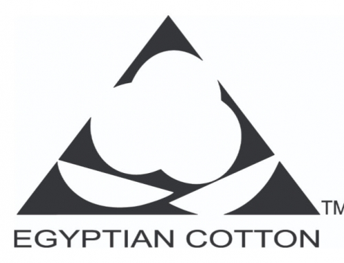 Egyptian Cotton – Launch New Brand Identity and Promote Sustainability – 34% Increase in Trust